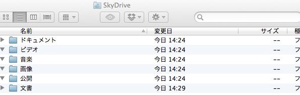 SkyDrive2 1