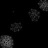 processing.jsで作られたアメーバのシミュレーション