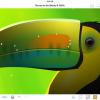 iPad用イラストレーションアプリ「Inkpad」がオープンソースに
