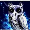 Mac用ペイントアプリ「Flame Painter 2」などが2ドルで入手できるTwo Dollar Tuesday