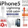 USB Lightning DOCK ケーブル高すぎワロタ