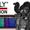 技術者ホイホイのガチャゲーム「O'REILLY COLLECTION」