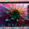「Pixelmator」や「Geekbench 3」、「DaisyDisk」が安い!ブラックフライデーセール中の厳選Macアプリセールまとめ