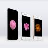 「iPhone 6」のラウンドディスプレイにピッタリの優美な花の壁紙