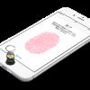 Apple、エラー53を修正する「iOS 9.2.1 build 13D20」を公開。iTunes経由でのみインストール可能