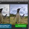 写真から不要な物体を消去できる人気アプリ「Snapheal」が60%オフ!本日のMacアプリセールまとめ