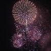 デスクトップで美しい花火を楽しむことができる「Fireworks HD」が無料化した本日のMacアプリセールまとめ
