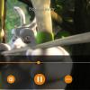 Windows 10対応の人気動画プレイヤー「VLC for UWP 2.0 beta」がリリース