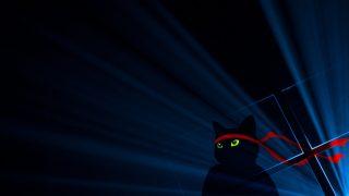 Microsoft、 NinjaCat壁紙Windows 10 Anniversary Updateエディションを公開