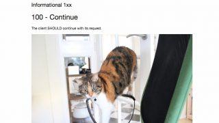 Cat HTTP status codes - 猫写真とともにHTTPステータスコードを学習できる一石二鳥情報