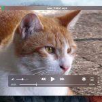 iina - 洗練されたGUIを持つmacOS向けの強力な動画プレイヤー