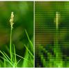 Legofy - あらゆる画像をレゴ化できるPythonプログラム