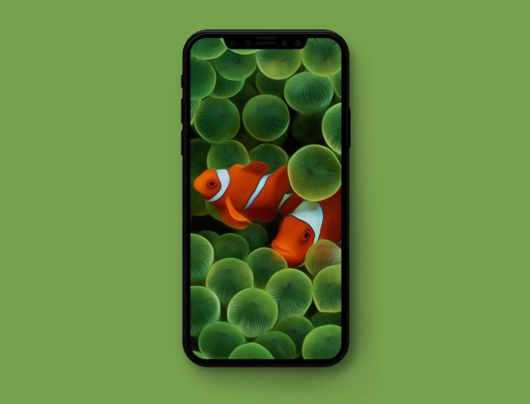 IOS original wallpapers splash iOS 1 crop 768x586