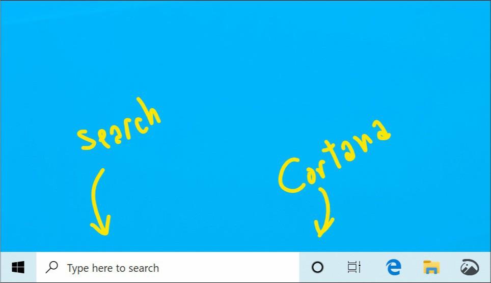 Search and cortana
