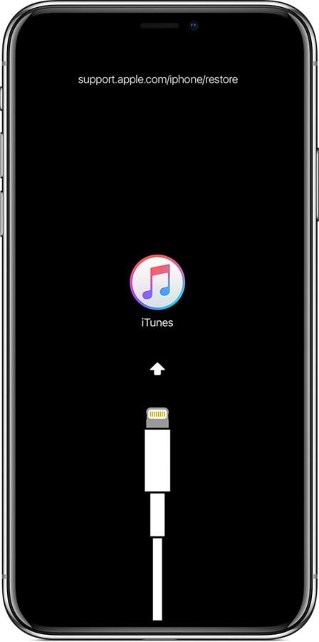 Ios12 iphone x restore iphone itunes 448x900