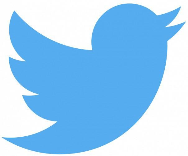 Twitter bird logo medium 605x500
